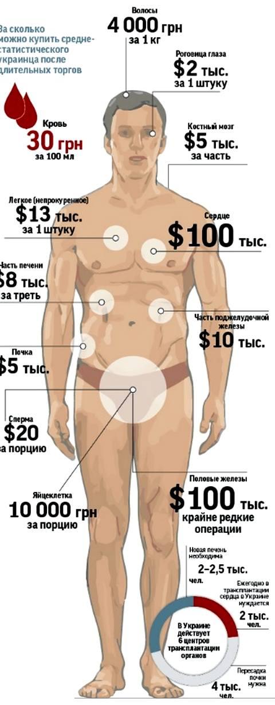 стоимость диетолога в москве