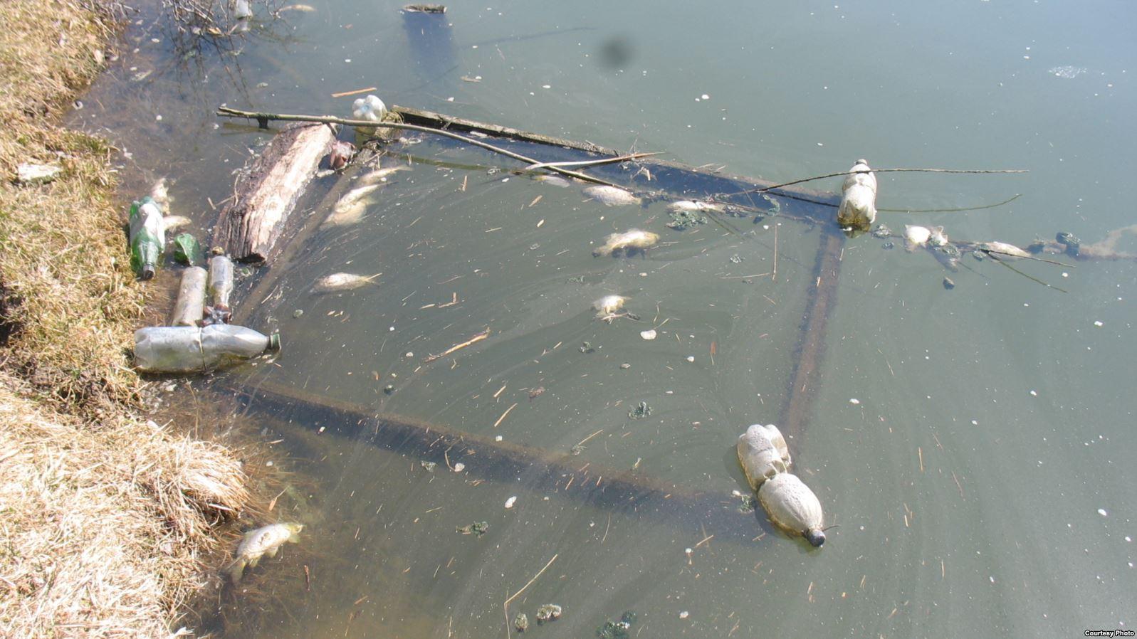 Забруднення води, Україна