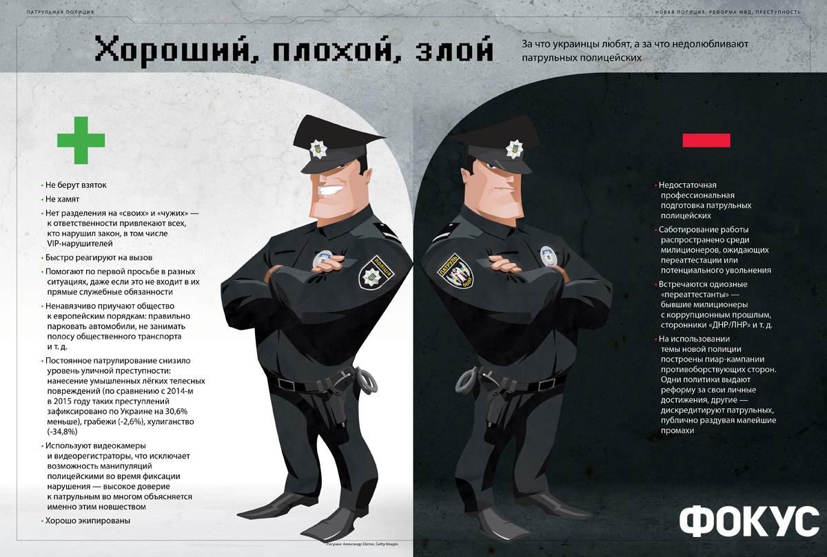 применяются должностная инструкция следователя полиции на транспорте сибирские коты Фото: